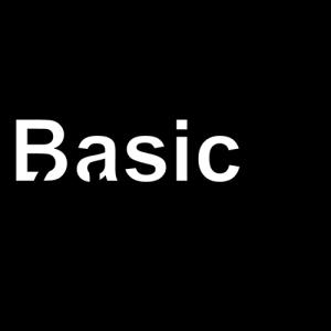basic-organization-logo